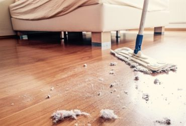 cleaning services in thrissur | pest control services