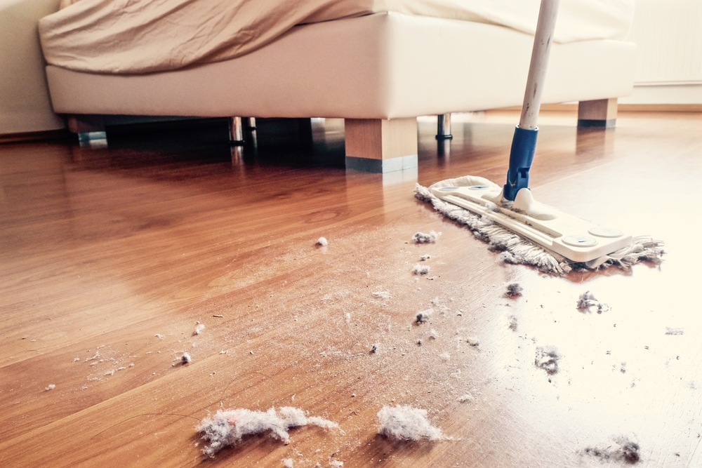 cleaning services in thrissur   pest control services